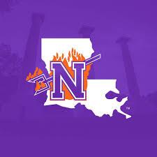 NSU Logo2