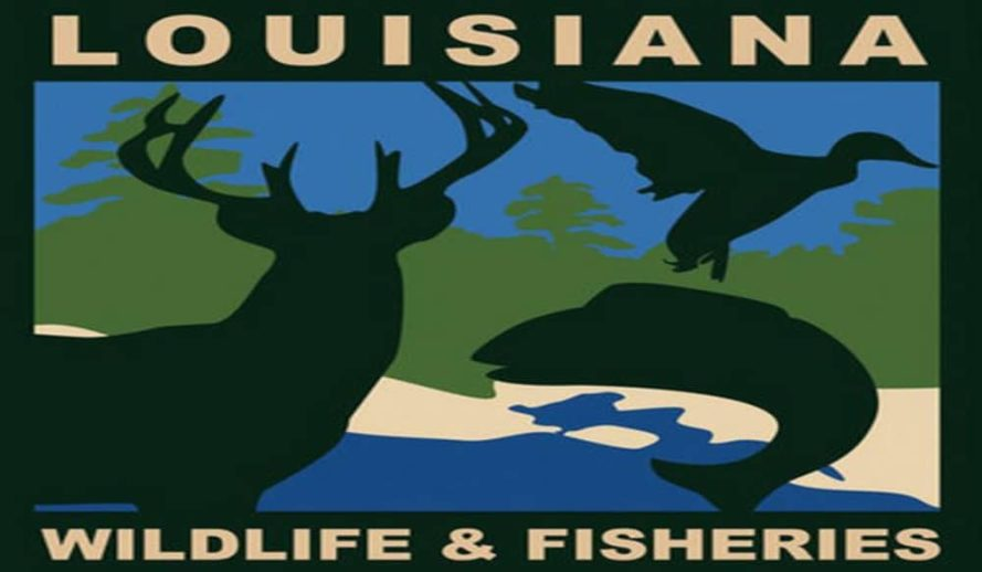 Louisiana-Department-of-Wildlife-and-Fisheries-logo