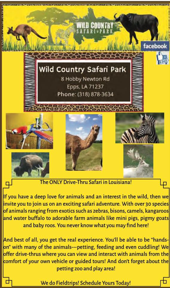 Wild Country Safari CA